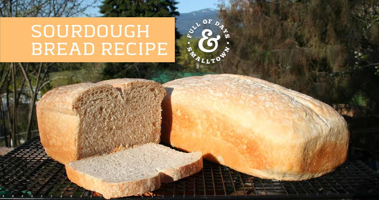 mr coffee bread machine recipes