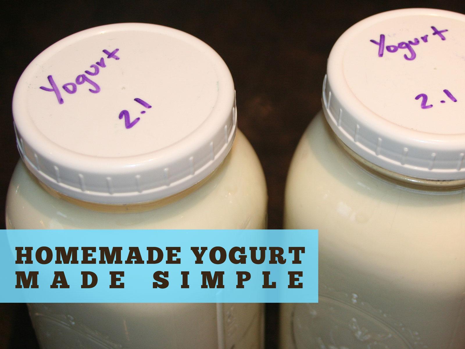 Homemade Yogurt Header