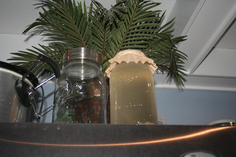 Homemade water kefir fermenting on top of the refrigerator in a mason jar with a coffee filter for a lid.