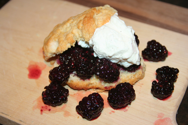 4th-of-July-Menu_Full-of-Days_Blackberry-Shortcake