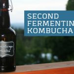 Kombucha Full of Days Second Fermenting