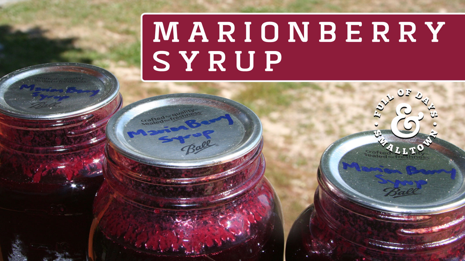 Marionberry-Syrup_Full-of-Days_1600-x-900