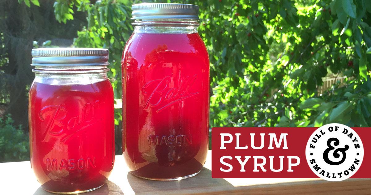 Homemade Plum Syrup Recipe