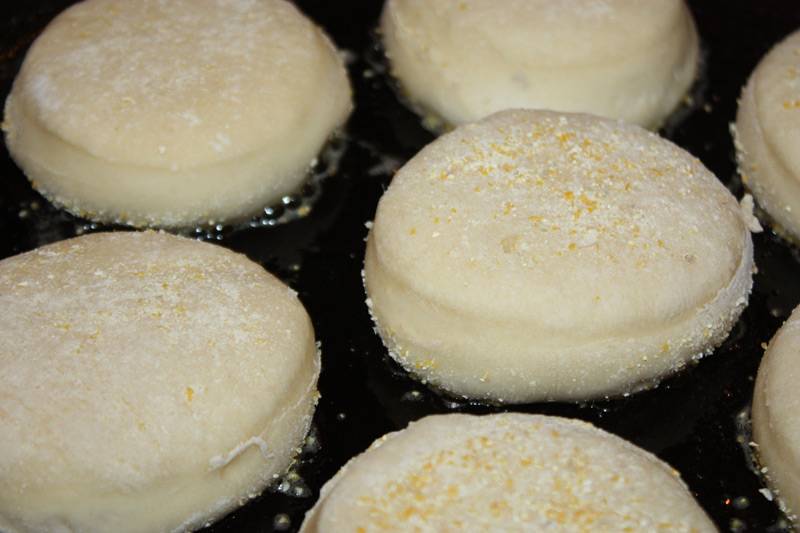 Sourdough English Muffins step 11