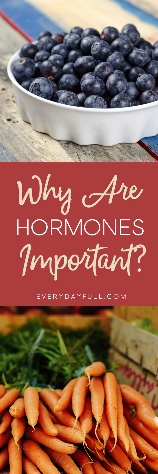 Why Are Hormones Important Pinterest Pin