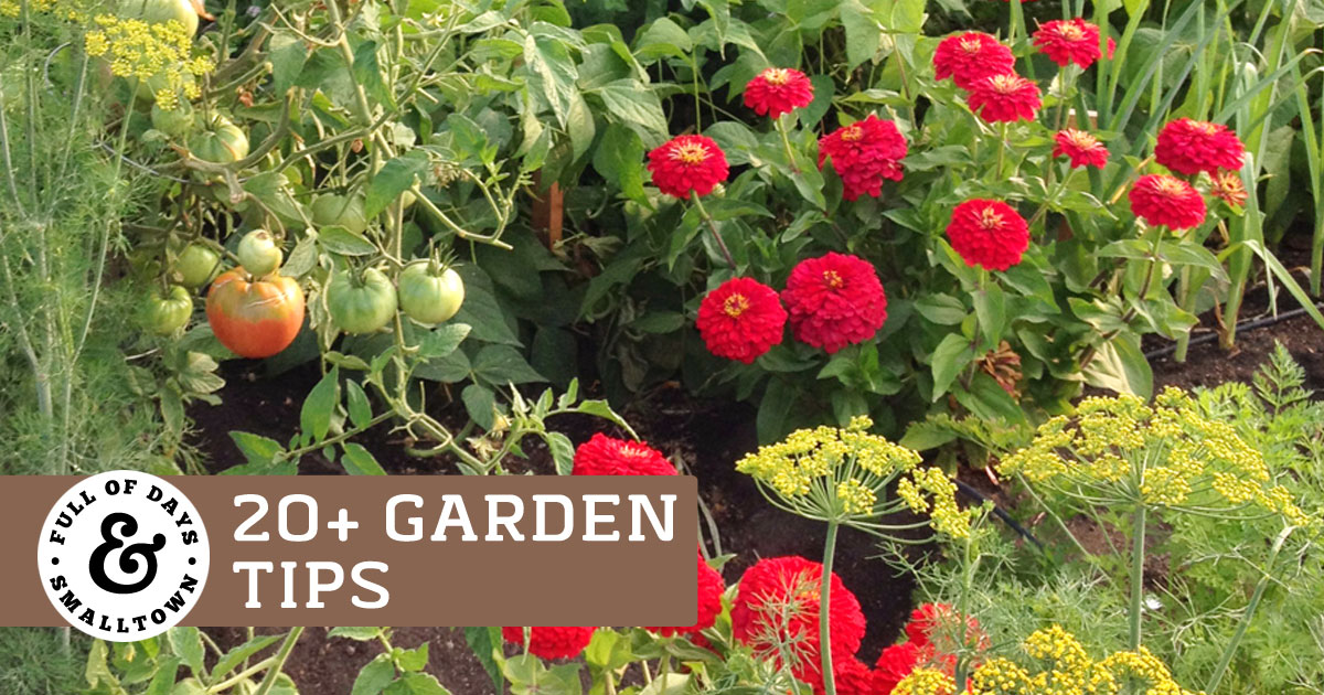 20 Garden Tips for a Bountiful Harvest