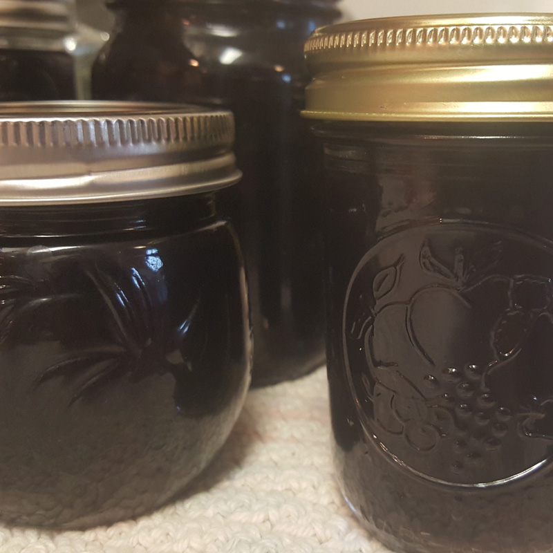 canned_elderberry_elixir