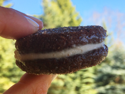 Healthy homemade oreo cookie, ready to dunk into milk and eat.