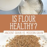 "Two images, one of fresh ground flour coming out of a grain mill, the other are whole wheat berries on a counter. Text overlay says, ""Is Flour Healthy? Ancient Grain Vs. Modern Grain""."